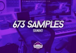 673 Samples Drum Kit (Drumkit)