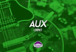 The Kit Plug – Aux (Loopkit)