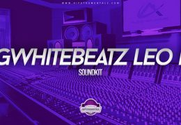 Bigwhite Beatz – Leo Kit Vol. 1 (Drumkit)