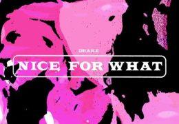 Drake – Nice For What (Instrumental) (Prod. By BlaqNmilD & Murda Beatz)