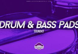Drum and Bass Pad Samples (Soundkit)