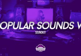 Popular Sounds Collection Vol. 2 (Drumkit)