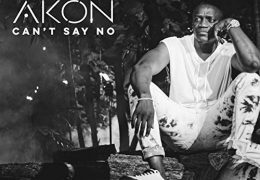 Akon – Can't Say No (Instrumental) (Prod. By Composer & Mally Mall)