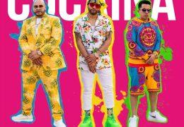 Cristion D'or, Fat Joe & De La Ghetto – Cocaina (Instrumental) (Prod. By DJ MostWanted)