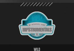 Original: WILD (Prod. By OTYS Beats)