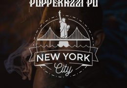 Popperazzi Po – New York City (Instrumental) (Prod. By Damn Dre Chill)
