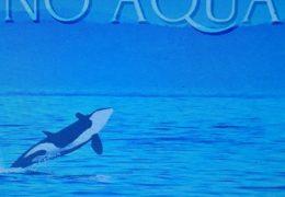 DDG – No Aqua (Instrumental) (Prod. By TreOnTheBeat)