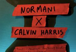 Normani – Checklist (Instrumental) (Prod. By Calvin Harris)