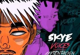 Skye – Voices (Instrumental) (Prod. By Kid Joki)