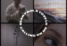 Sean Paul & Tove Lo – Calling On Me (Instrumental) (Prod. By Banx & Ranx)