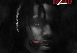 LilDurk – Die Slow (Instrumental) (Prod. By Chopsquad DJ)