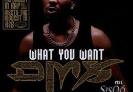 DMX – What These Bitches Want (Instrumental) (Prod. By Nokio the N-Tity & Swizz Beatz)