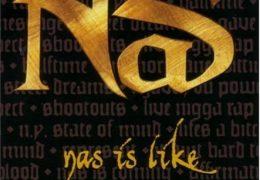 Nas – Nas Is Like (Instrumental) (Prod. By DJ Premier)