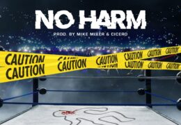 Babyy Chris – No Harm (Instrumental) (Prod. By Mike Mixer & Cicero)