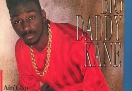Big Daddy Kane – Ain't No Half Steppin' (Instrumental) (Prod. By Marley Marl)