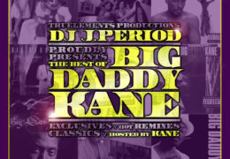 Big Daddy Kane – Young, Gifted & Black (Instrumental) (Prod. By Marley Marl)