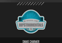 Original: SNAKE CHARMER (Prod. By James Gold Beats)