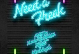 Mighty Bay – Need A Freak (Instrumental) (Prod. By Mighty Bay)