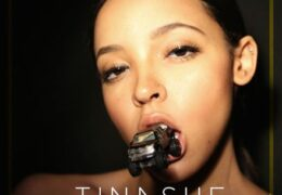 Tinashe – Ride Of Your Life (Instrumental) (Prod. By Metro Boomin)