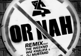 Ty Dolla$ign – Or Nah (Instrumental) (Prod. By Mike Free & Mustard)