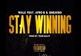 Wale – Stay Winning (Instrumental) (Prod. By Team Salut)