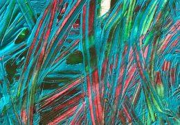 Action Bronson – Latin Grammys (Instrumental) (Prod. By Tommy Mas)