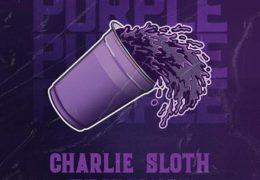 Charlie Sloth – Purple (Instrumental) (Prod. By Charlie Sloth)