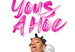 Sukihana – Yous A Hoe (Instrumental) (Prod. By Lamb Litty & Bigg D)