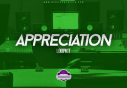 Daanmakesbeats – Appreciation (Loopkit)