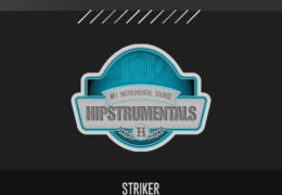 Original: Striker (Prod. By rabeatz)