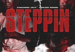 Pakman Jitt – Steppin (Instrumental) (Prod. By Tooka Beatz)