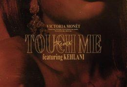 Victoria Monet – Touch Me (Remix) (Instrumental) (Prod. By D'Mile)