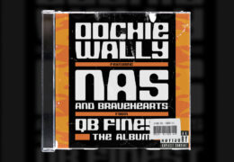 Sample Sundays | Nas & The Bravehearts – Oochie Wally | Prod. By Dee Aye | #3
