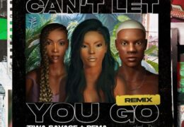 Stefflon Don – Can't Let You Go (Remix) (Instrumental) (Prod. By Ebenezer)
