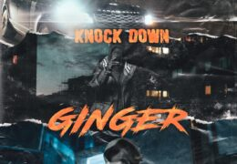2 Smokkey – Knock Down Ginger (Instrumental) (Prod. By 3lackondabeat)