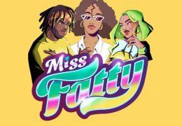 Hitimpulse – Miss Fatty Fatty (Instrumental)