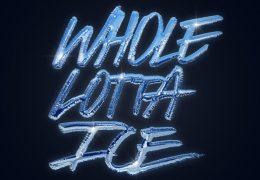 BigWalkDog – Whole Lotta Ice (Instrumental) (Prod. By pablomcr)