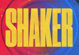 Toddla T, Jeremiah Asiamah & Sweetie Irie – Shaker (Instrumental) (Prod. By Jeremiah Asiamah & Toddla T)