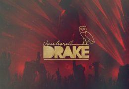 Drake – King Leon (Instrumental) (Prod. By Northern Profit & Boi-1da)