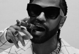 Big Sean – What A Life (Instrumental) (Prod. By Rogét Chahayed, Carter Lang, G-Dav & Hit-Boy)